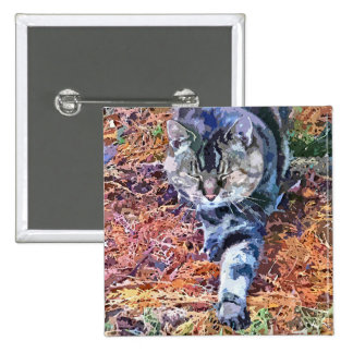 CATS PINBACK BUTTONS
