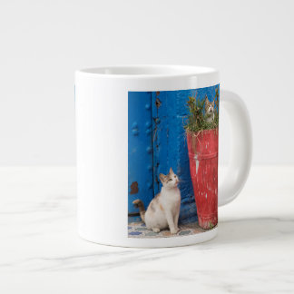 Cats playing around, Rabat, Morocco Large Coffee Mug