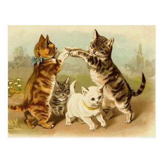 Cats Playing Vintage Illustration Postcard