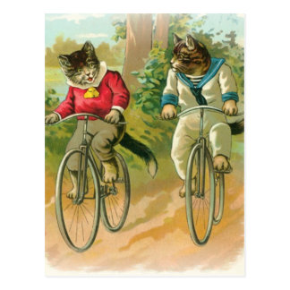 Cats Riding Bikes Postcard