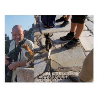 Cat's Rule in Ephesus Postcard