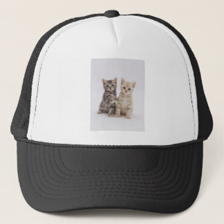 Cats Welcome Trucker Hat
