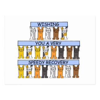 Cats Wishing you a Speedy Recovery Postcards