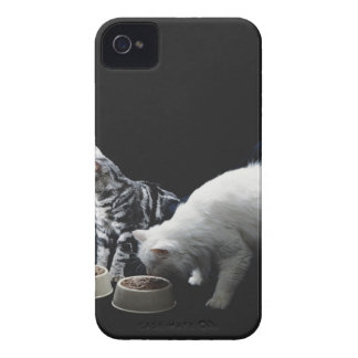 Cats with bowl of food iPhone 4 case