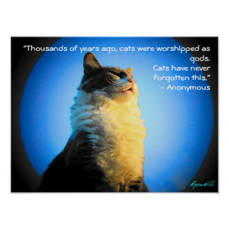 Cats Worshipped as gods- with anonymous quote Poster