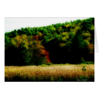 Cattails in New England in Autumn Card