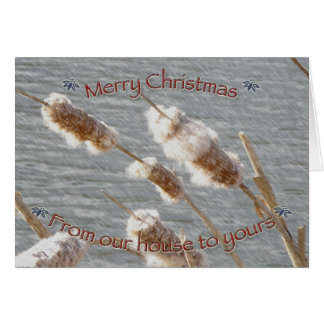 Cattails Merry Christmas Card