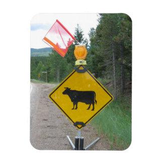 Cattle Crossing Warning Sign, Utah Magnet