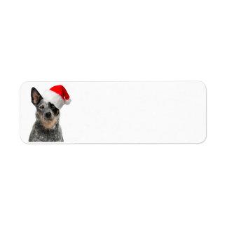Cattle Dog Christmas Return Address Labels