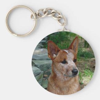 Cattle Dog Key Ring