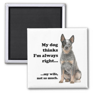Cattle Dog v Wife Magnet