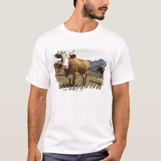 Cattle T-Shirt