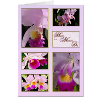 Cattleya Orchid Mother's Day Greeting Card