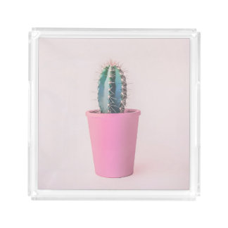 Catus in pink pot acrylic tray