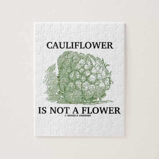Cauliflower Is Not A Flower (Food For Thought) Puzzles