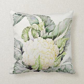 Cauliflower Study 1993 Cushion