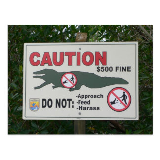 Caution Alligators Sign Postcard