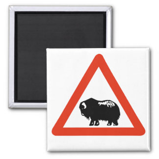 Caution Musk Oxen, Traffic Sign, Greenland Square Magnet