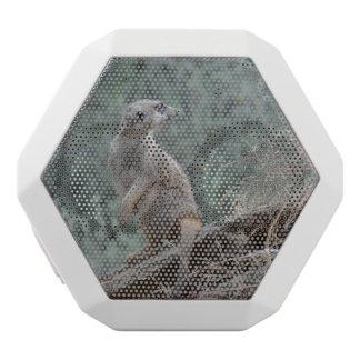 Cautious Meerkat White Boombot Rex Bluetooth Speaker