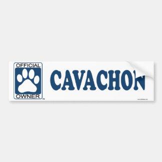 Cavachon Blue Bumper Sticker