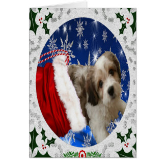 Cavachon Greeting Card, Christmas Card