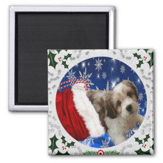 Cavachon Magnet, Christmas Magnet