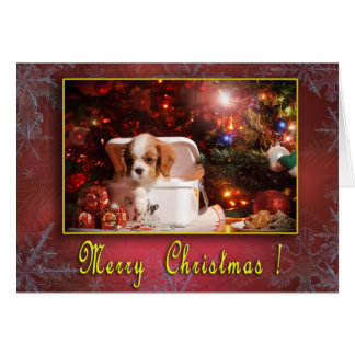 Cavalier Christmas card