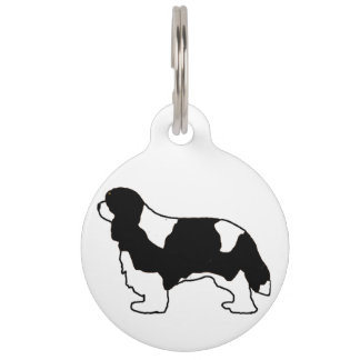Cavalier King Charles black and white silo Pet ID Tag