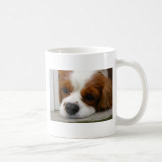 Cavalier King Charles Spaniel Basic White Mug