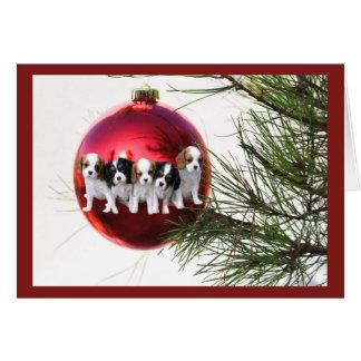 Cavalier King Charles Spaniel Christmas Card Ball