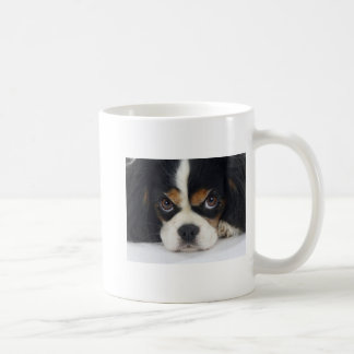 Cavalier King Charles Spaniel Coffee Cup Tri-Color