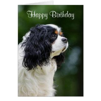 Cavalier King Charles Spaniel dog custom birthday Card