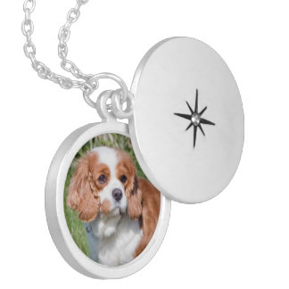 Cavalier King Charles Spaniel dog photo necklace