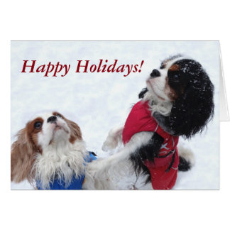 Cavalier King Charles Spaniel Holiday Card