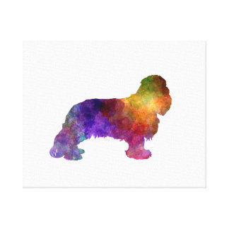 Cavalier King Charles Spaniel in watercolor Canvas Print