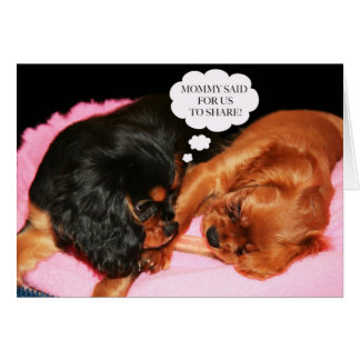Cavalier King Charles Spaniel Let's Share Care Card