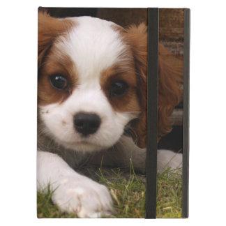 Cavalier King Charles Spaniel Puppy behind flowers iPad Air Cases