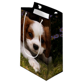 Cavalier King Charles Spaniel Puppy behind flowers Small Gift Bag