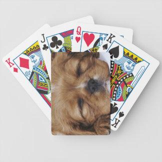 Cavalier King Charles Spaniel puppy sleeping Bicycle Poker Deck