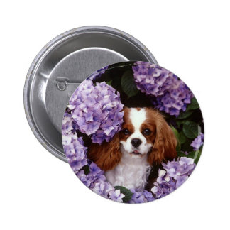 Cavalier King Charles Spaniel Red and White 6 Cm Round Badge