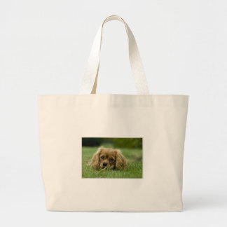 Cavalier King Charles Spaniel Ruby Jumbo Tote Bag