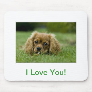 Cavalier King Charles Spaniel Ruby Mouse Pad