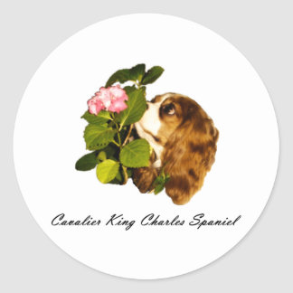Cavalier King Charles Spaniel With Flower Classic Round Sticker