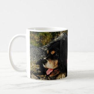 Cavalier King Charles Spaniels Coffee Mug