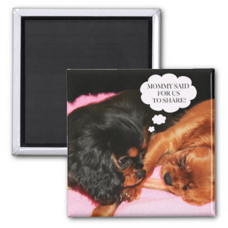 Cavalier King Charles Spaniels Puppies Square Magnet