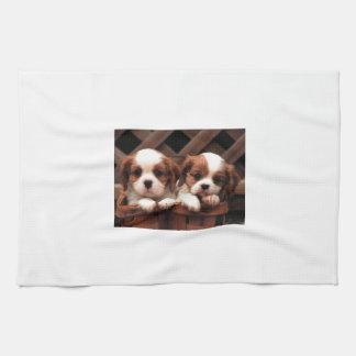 Cavalier Puppies Tea Towel