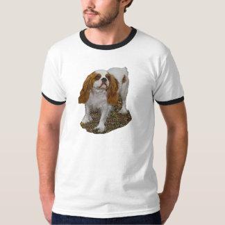 Cavalier Spaniel Men's Ringer Tee Shirts