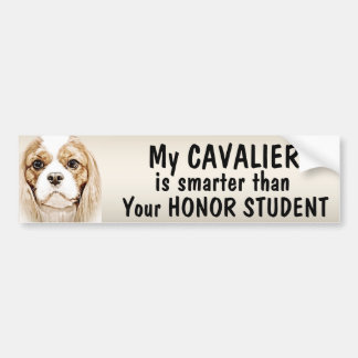 Funny Cavalier King Charles Spaniel T-Shirts, Funny Cavalier King ...