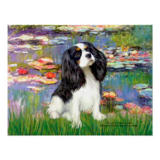 Cavalier (Tri Colored 5) - Lilies 2 Poster