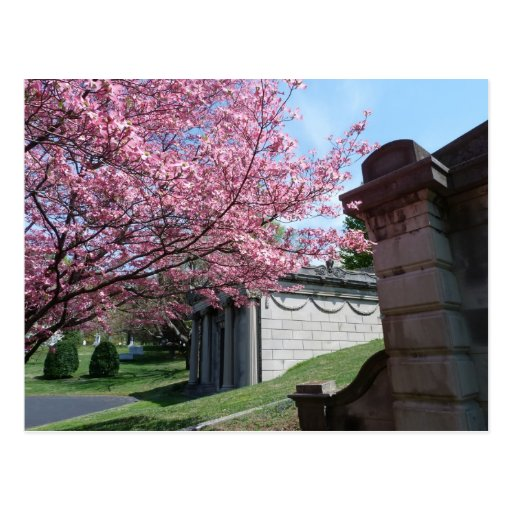 Cave Hill Cemetery Postcard